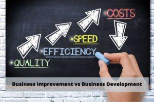 Management Consulting Firm | Business Improvement vs Business Development
