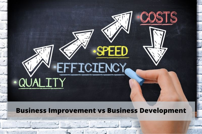 Management Consulting Firm | Business Improvement vs Business Development