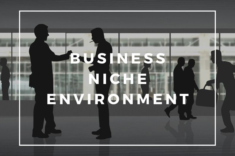 Proactive Business Strategy | Understanding Your Business Niche Environment