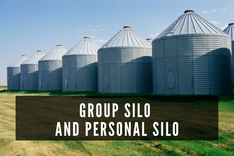 Business Strategy Consultant | What is Personal and Group Silo?